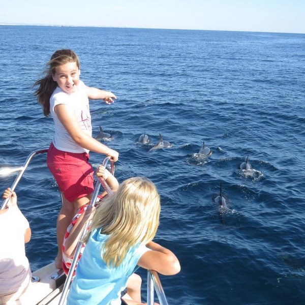 Accessible Dolphin Watching Lagos Portugal